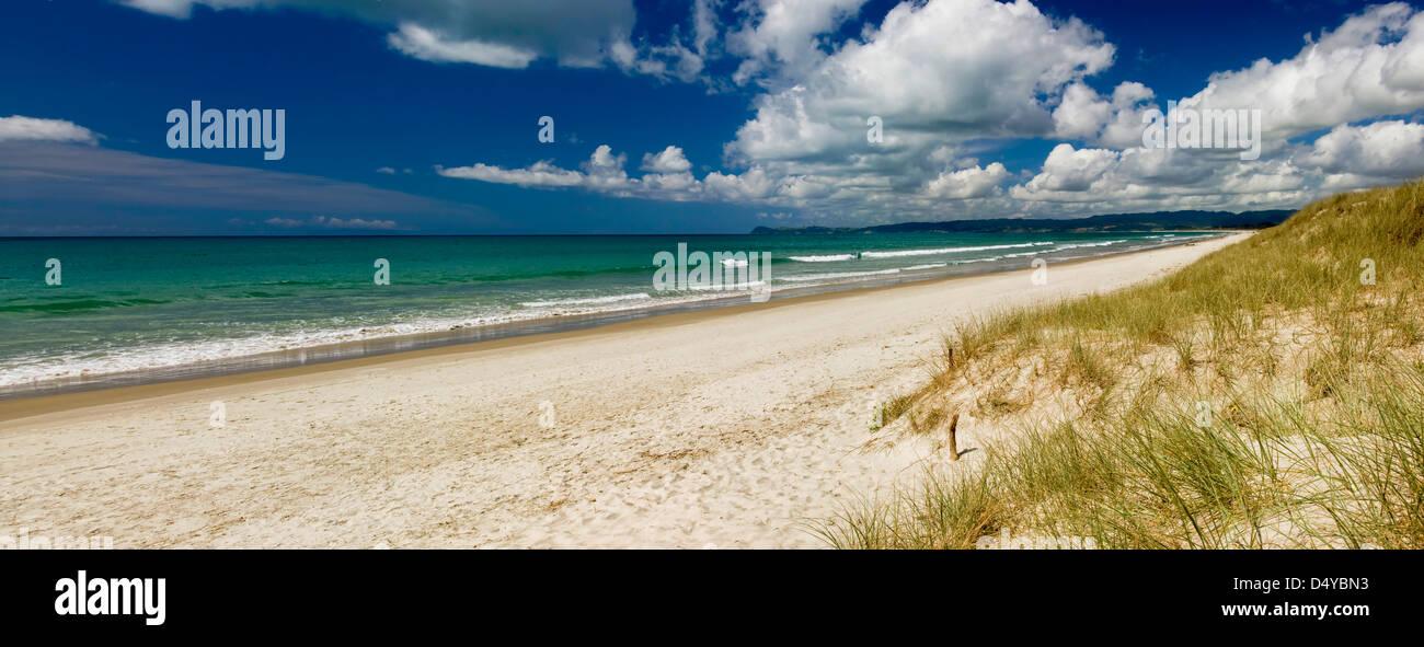 Sandy beaches, Whangarei, North Island, New Zealand - Stock Image