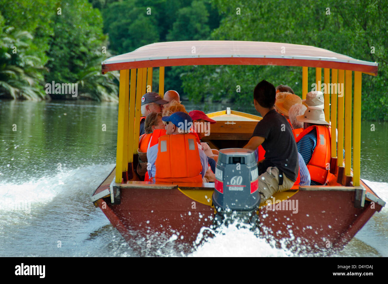 Borneo, Brunei. Tourist boat along mangrove forest along the Brunei river. Near the capital city of Bandar Seri - Stock Image
