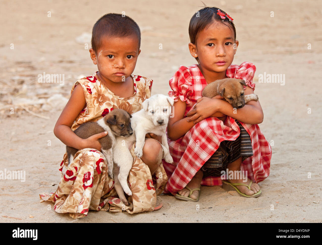 Two girls tenderly cradle a litter of puppies, Mandalay, Myanmar. Stock Photo