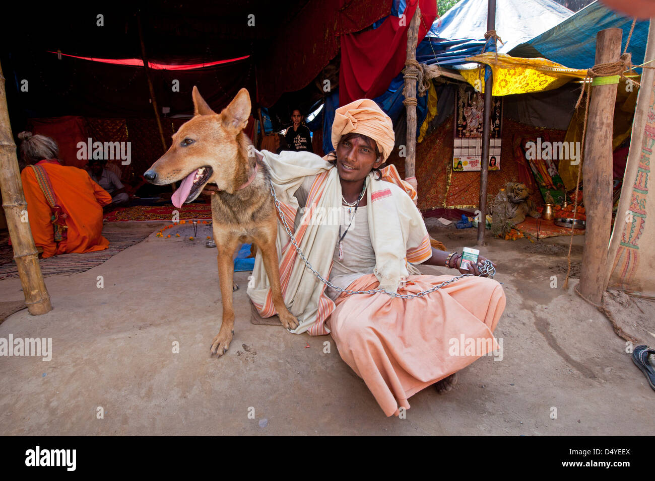 Hindu sadhus sit with their dogs at their tents during the Kumbh Mela, Haridwar, India. - Stock Image