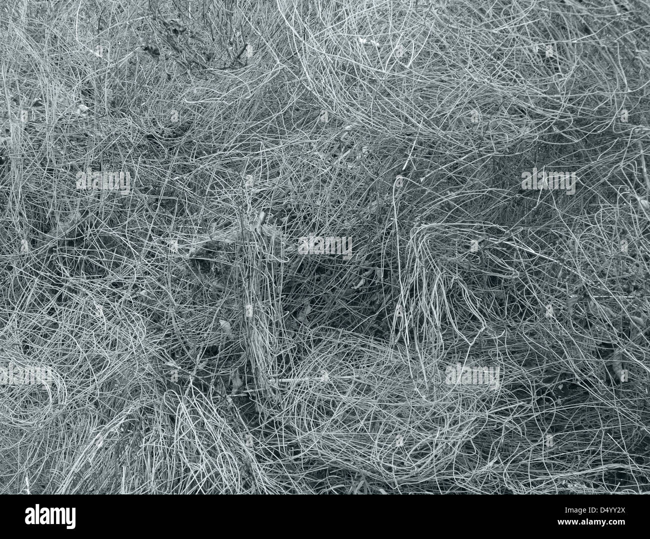 full frame abstract background showing a metallic wire entanglement - Stock Image