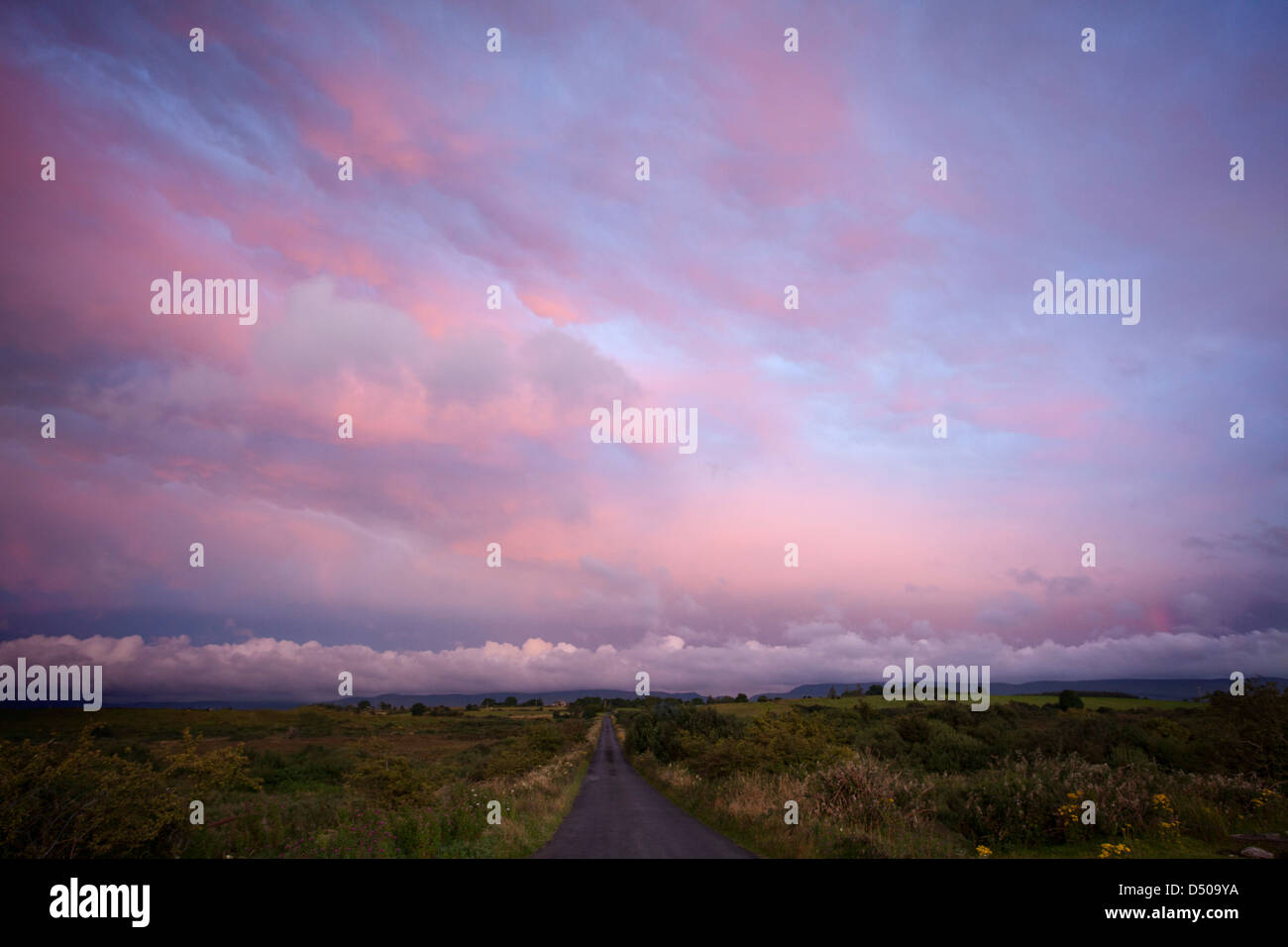 Rural lane at dusk, County Sligo, Ireland. - Stock Image