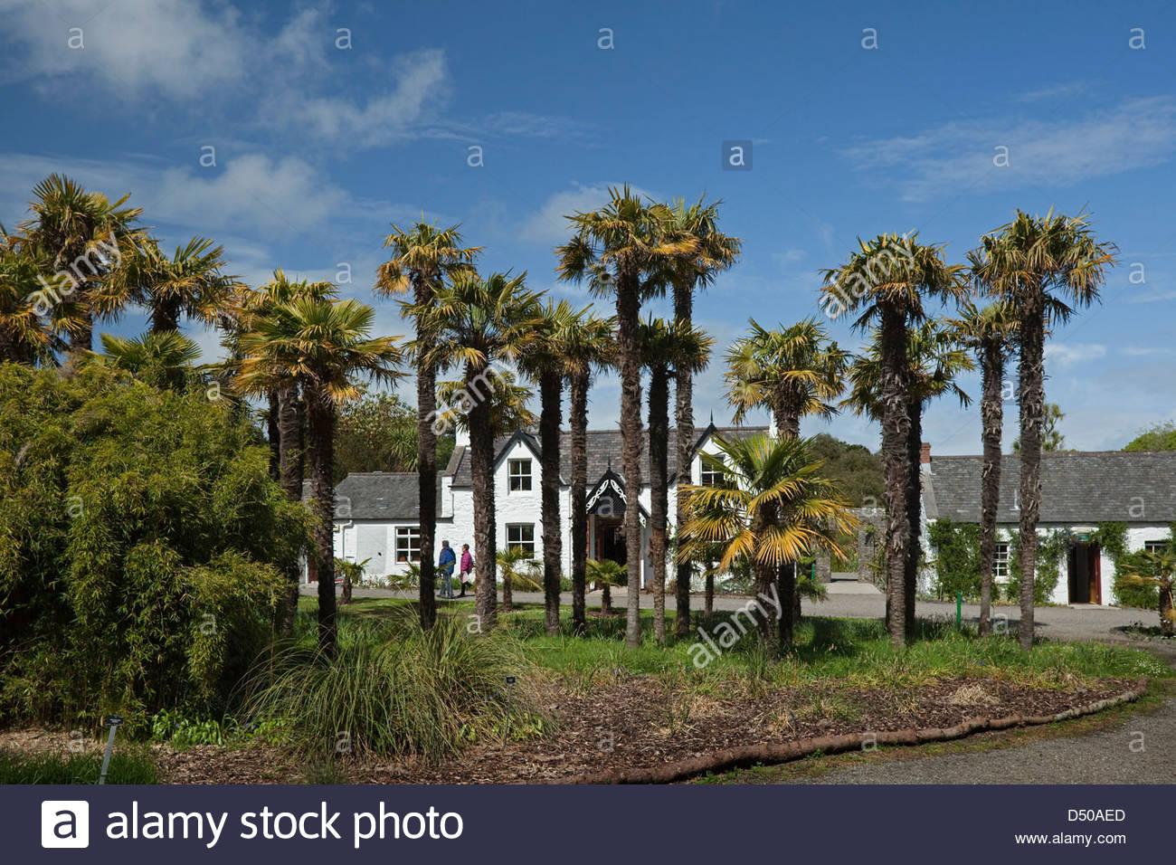 Logan Botanic Garden, Port Logan, Stranraer, Dumfries and Galloway, Scotland - Stock Image