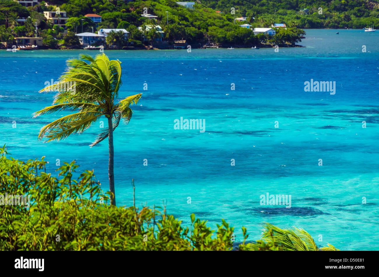 Palm trees and turquoise sea with island and houses in background in San Andres y Providencia, Colombia - Stock Image