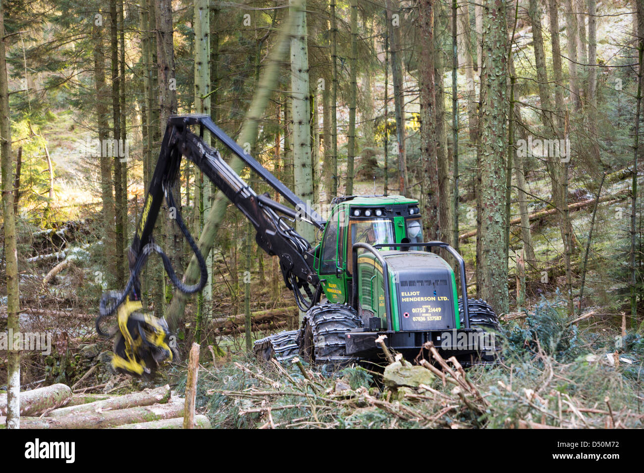 A forwarder harvesting timber in Grizedale Forest, Lake District, UK. Stock Photo