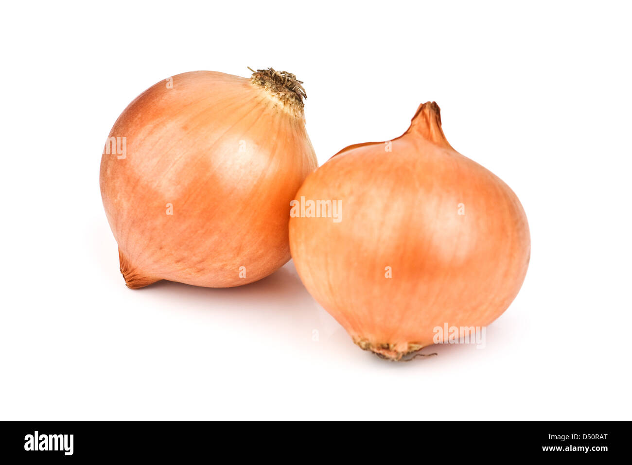 two onion isolated on white background - Stock Image