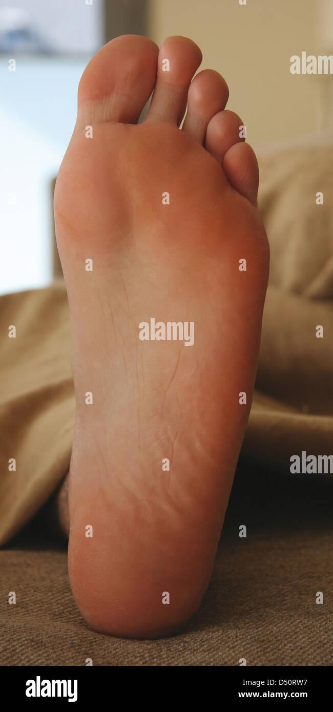 Anatomically Anatomy Bottom Foot Human Male Plantar Aspect Right ...