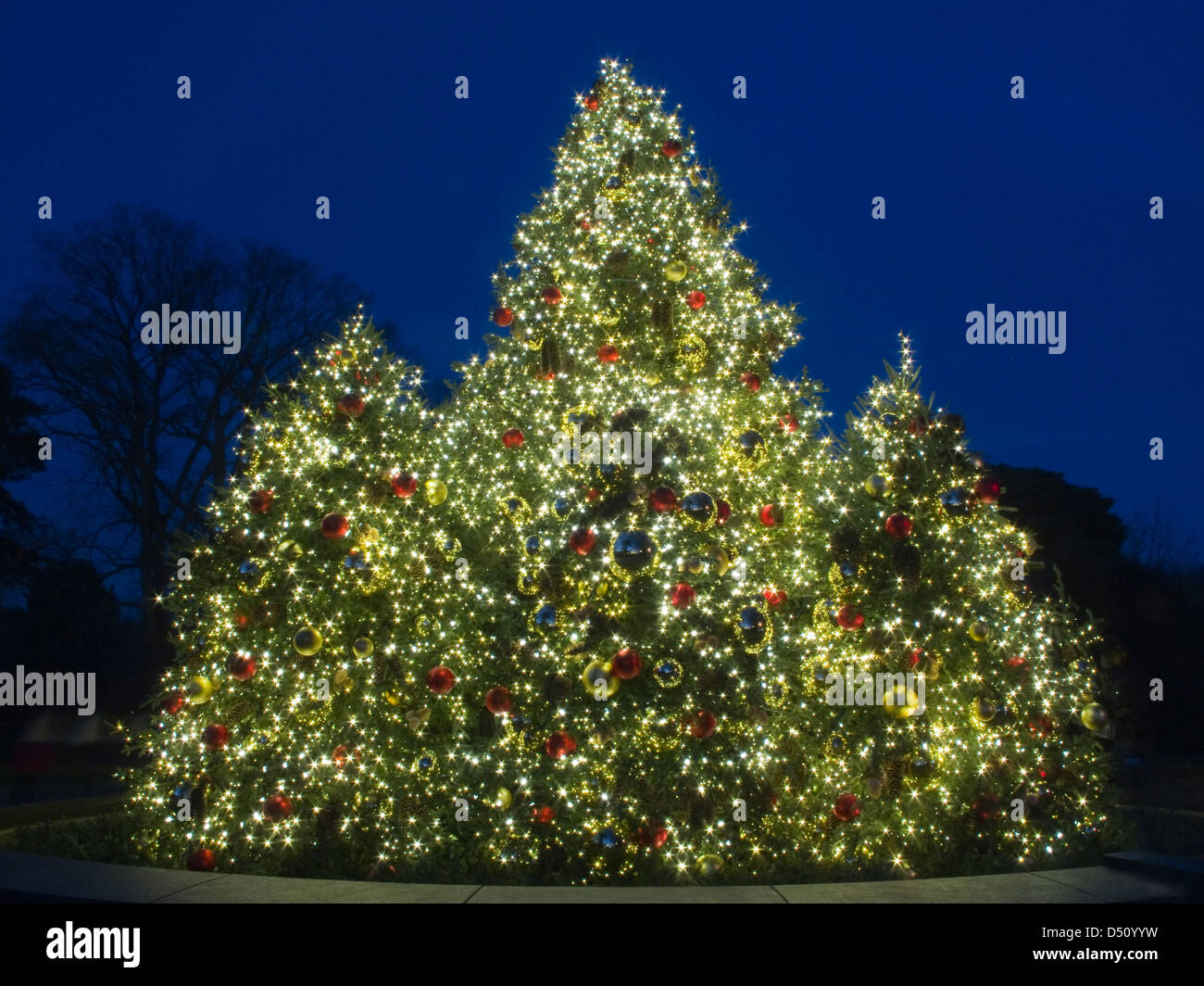 Twinkle Lights Stock Photos & Twinkle Lights Stock Images - Alamy