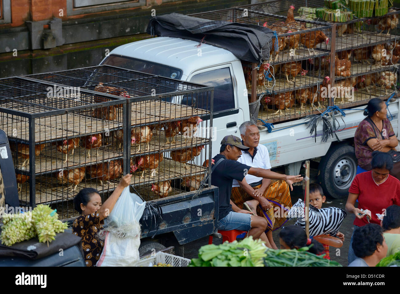 Indonesia, Bali, Ubud, selling chicken and vegetables at the market - Stock Image
