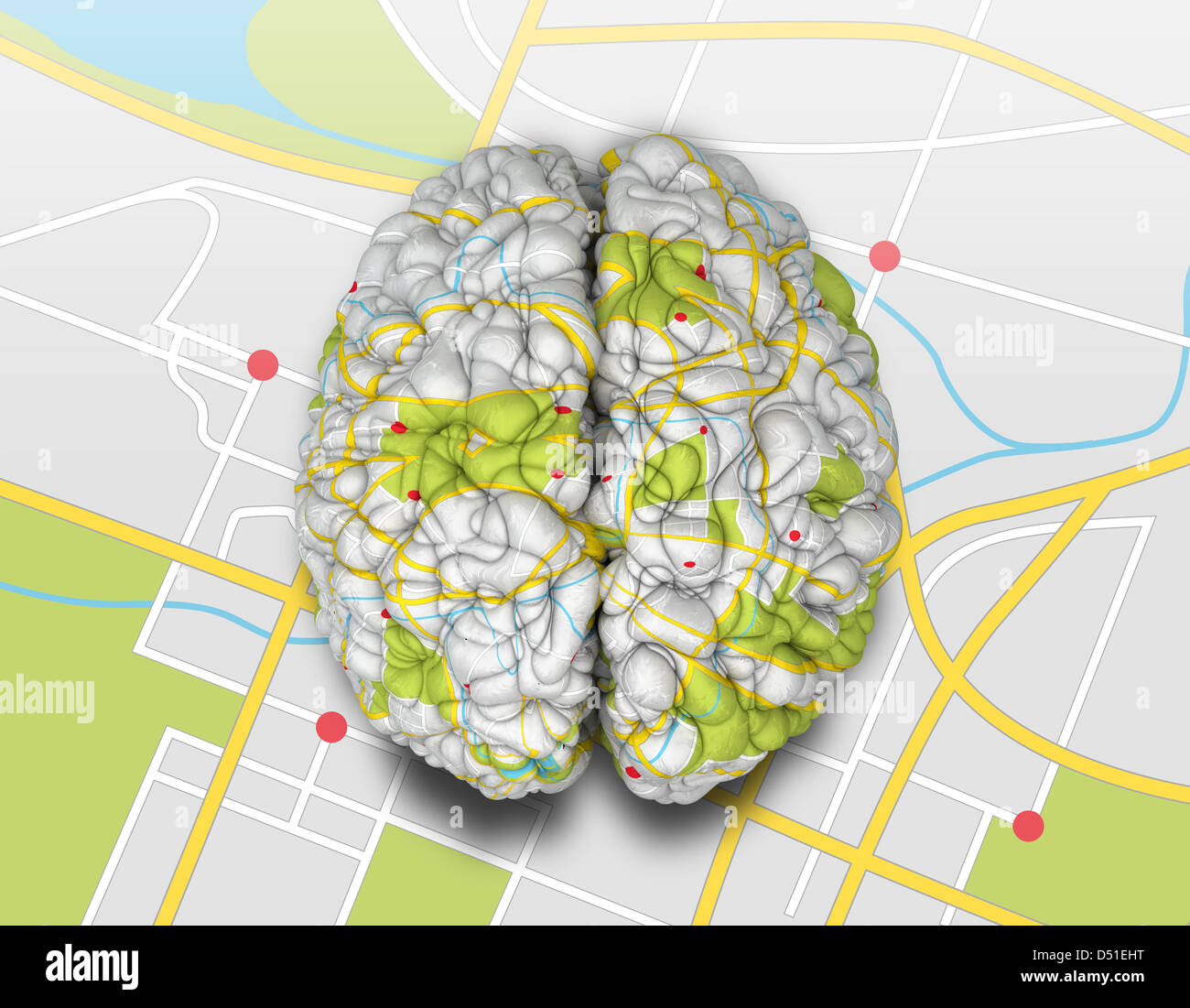 A brain wrapped with a simple road map texture laying on a