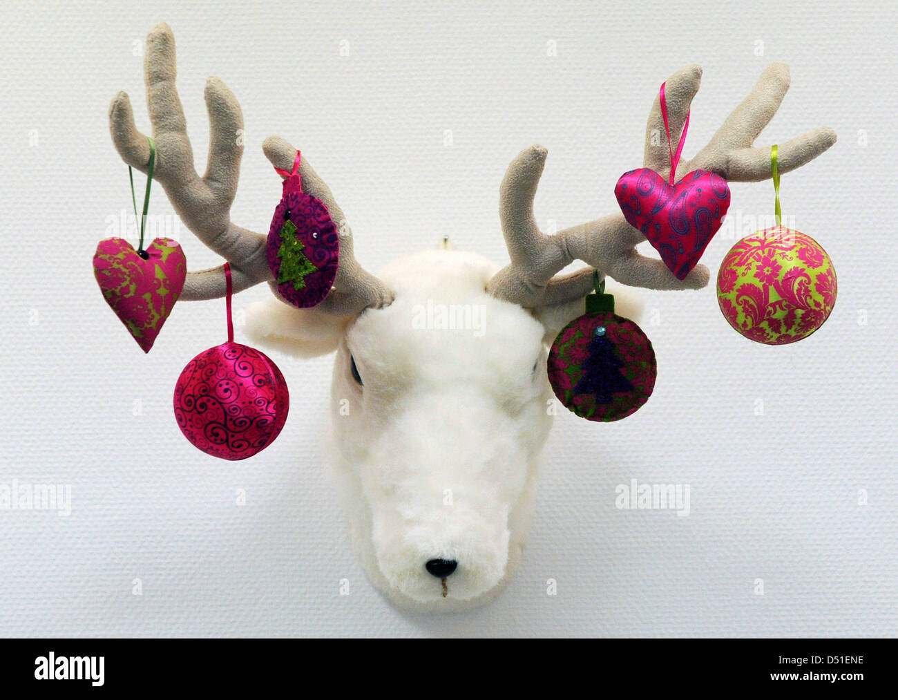 Colourful fabric-made christmas decoration from Gisela Graham hangs at the horns of a pet elk's head in Boennigenstedt, Stock Photo