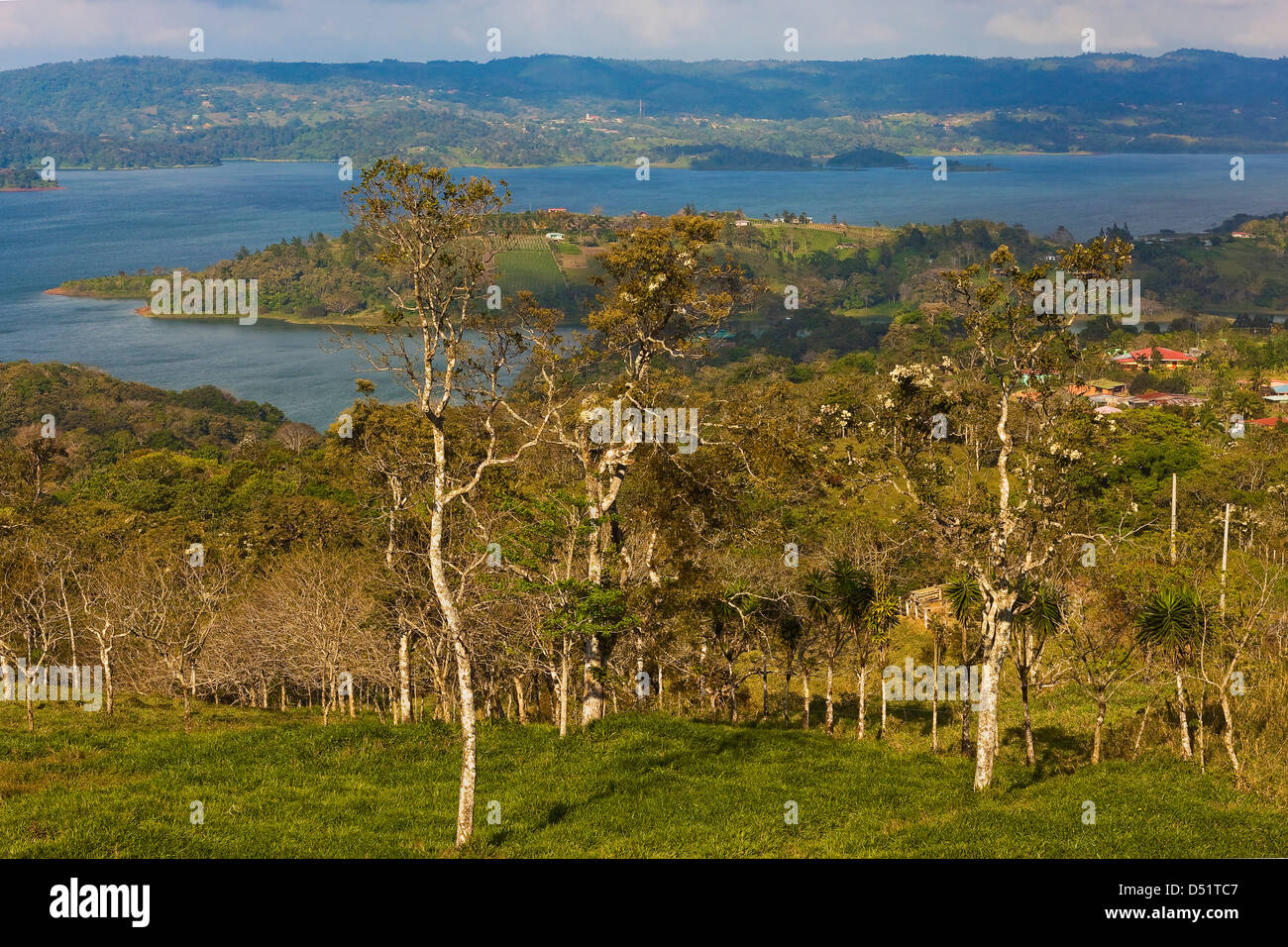 View of the tip of Lake Arenal NW of Arenal volcano; near San Luis, Arenal, Guanacaste Province, Costa Rica, Central - Stock Image