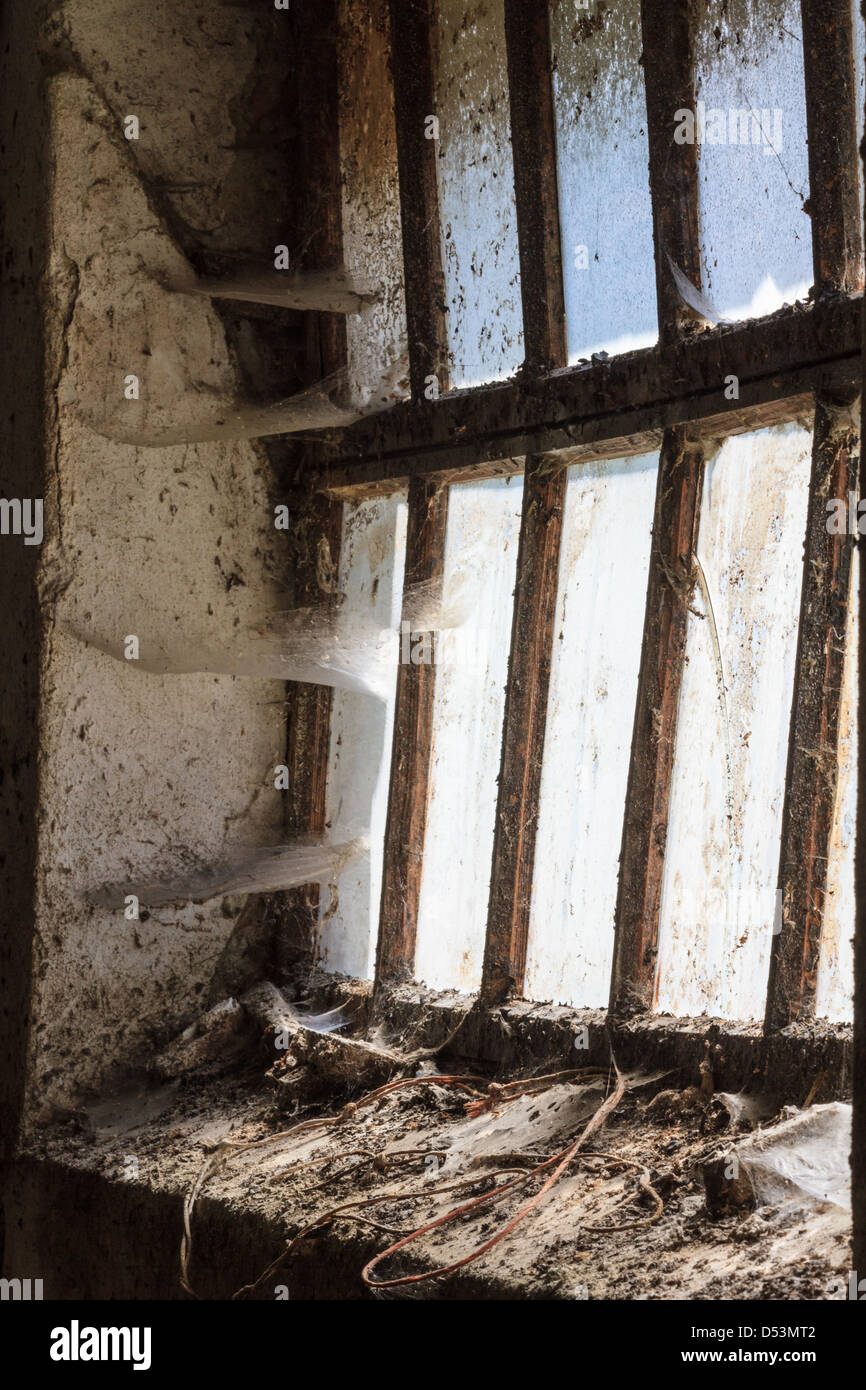 Old window with stains and cobwebs - Stock Image
