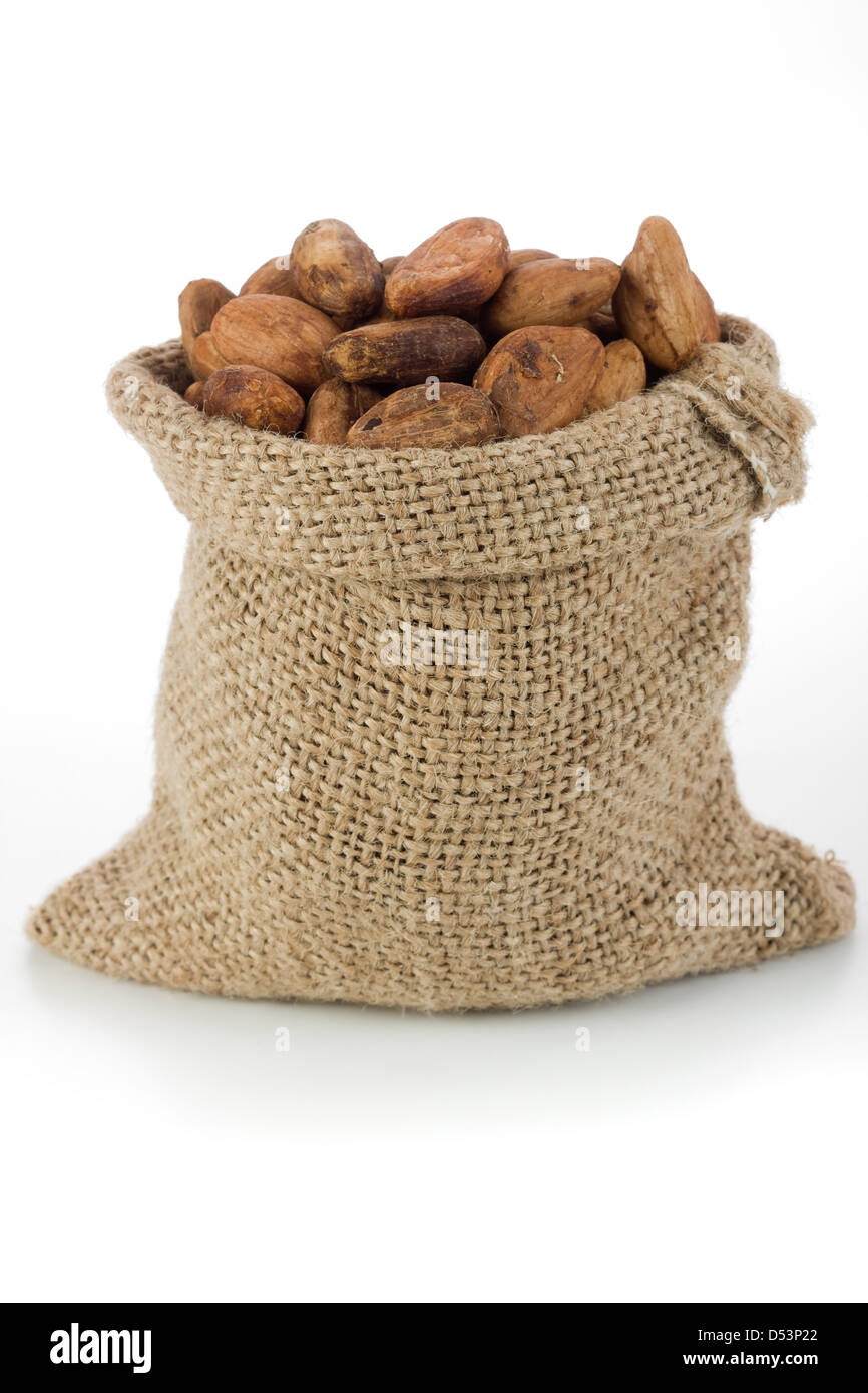 Cocoa beans in burlap bag - Stock Image