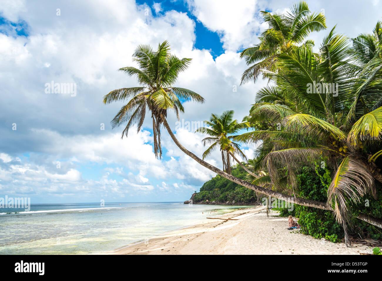 beach on Mahe island, Seychelles - Stock Image