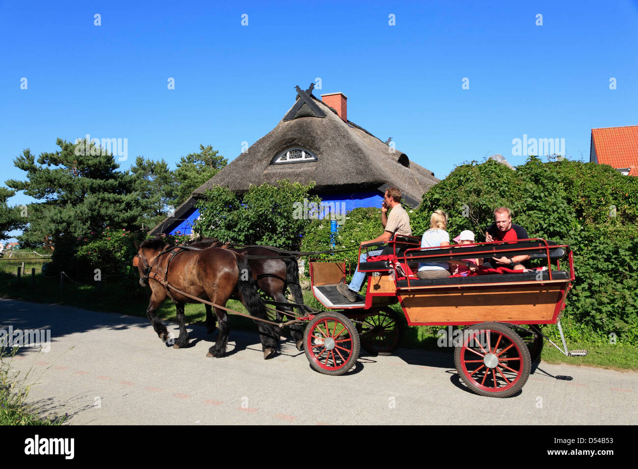 Hiddensee Island, Vitte, carriage in front of BLUE BARN, Blaue Scheune, Mecklenburg Western Pomerania, Germany - Stock Image