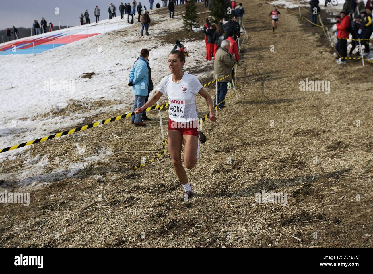 Bydgoszcz, Poland 24th, March 2013 IAAF World Cross Country Chamiponships. Senior Race Woman.  Pictured:  Urszula - Stock Image