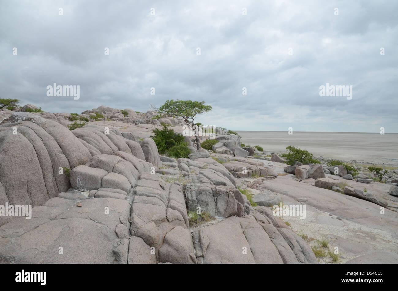 View of Kubu island and the Sua Pan, Botswana - Stock Image