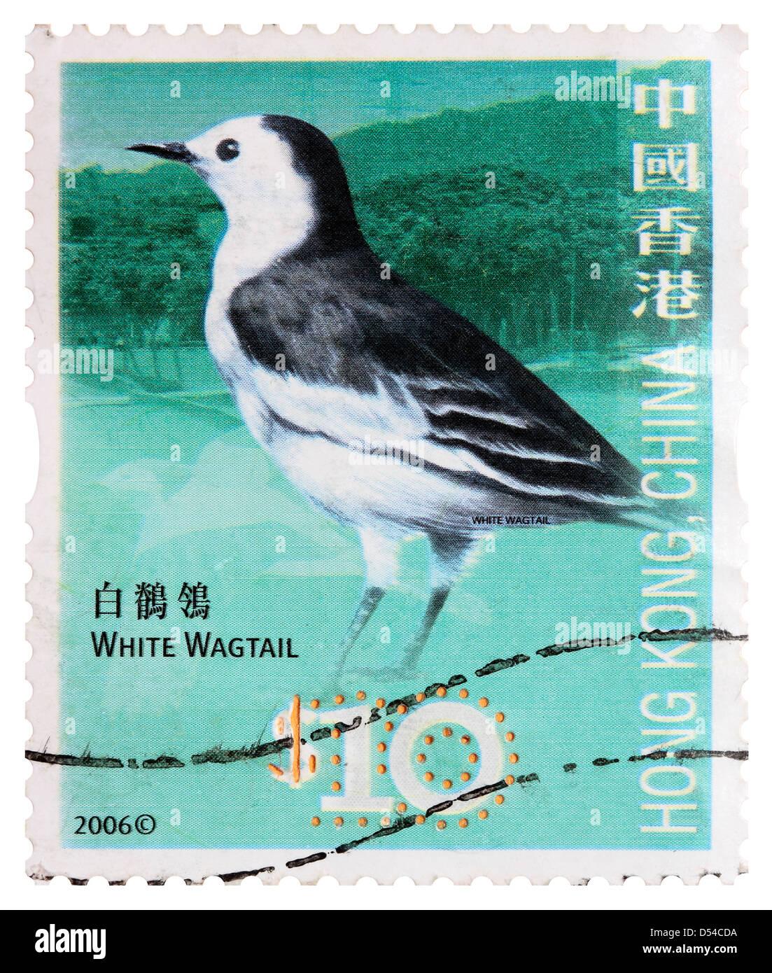 Used Ten Hong Kong Dollar Postage Stamp - White Wagtail - Stock Image