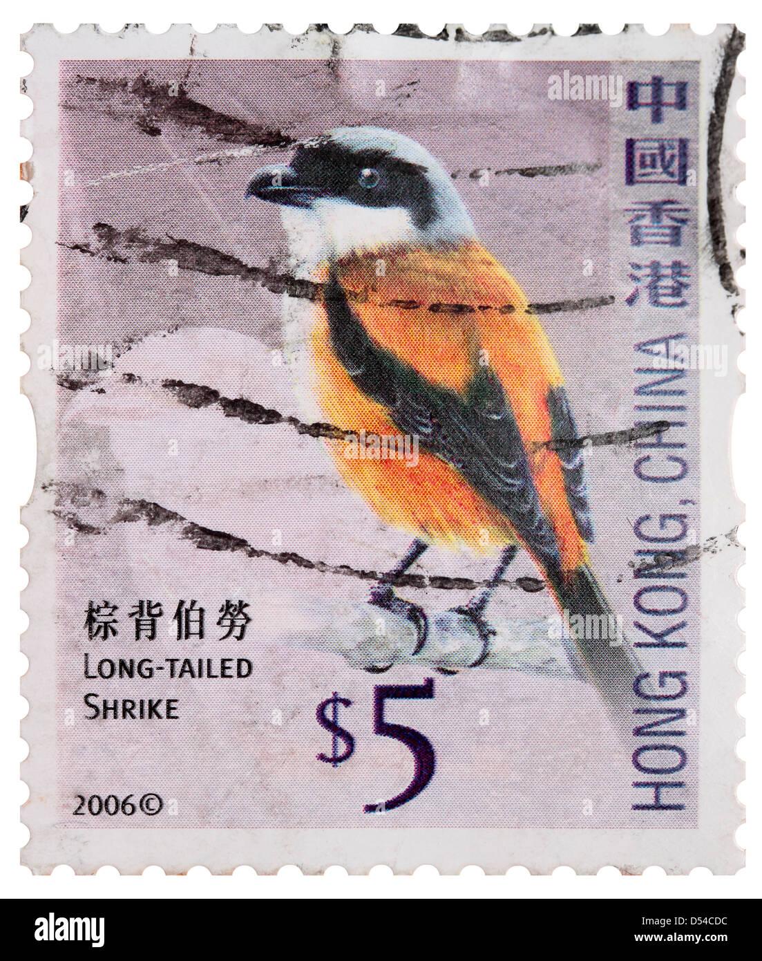 Used Five Hong Kong Dollar Postage Stamp - Long-Tailed Shrike - Stock Image