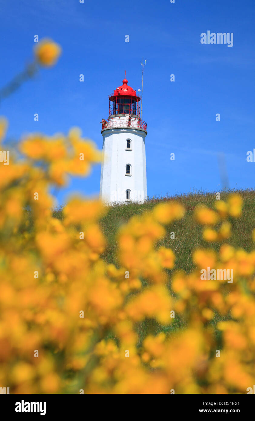 Lighthouse Dornbusch, Hiddensee Island, Mecklenburg-Vorpommern,  Western Pomerania, Germany, Europe - Stock Image
