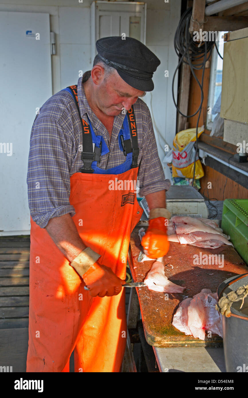 Hiddensee Island, fisher at work in Kloster harbor, Kloster,  Mecklenburg Western Pomerania, Germany - Stock Image