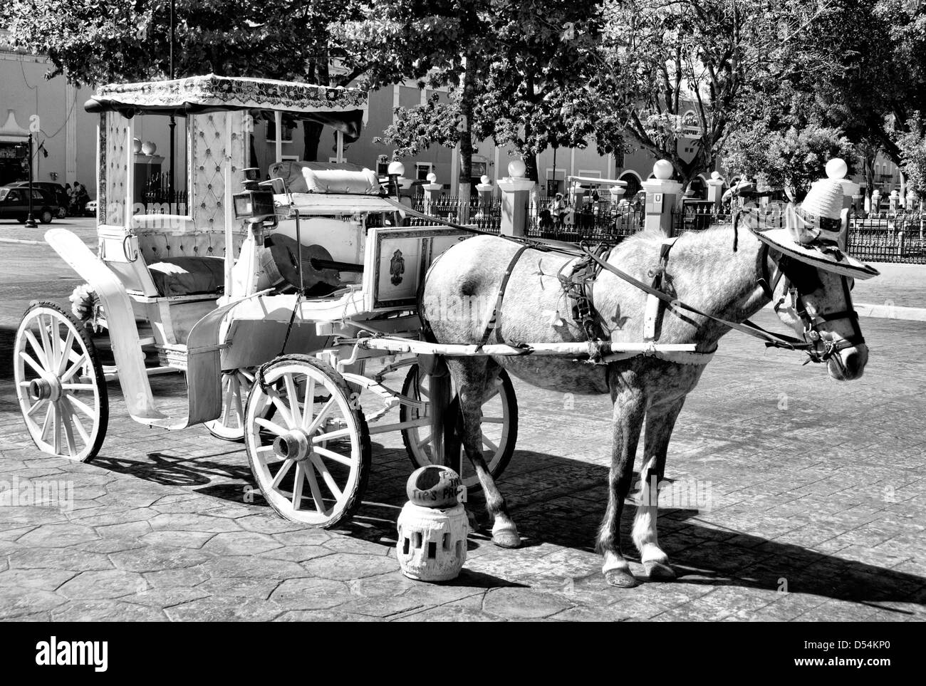 Mexican Horse Carriage For Tourist Stock Photo Alamy