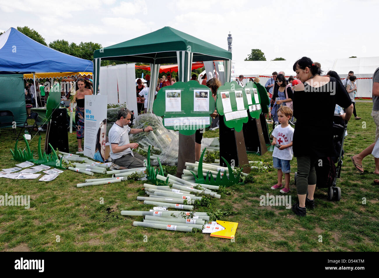 Young trees being given away at Camden now London Green Fair England UK - Stock Image