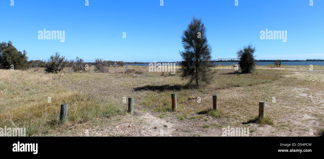 Panoramic view of the landscape  by Leschenault Estuary near Australind Western Australia  with casuarina trees - Stock Image