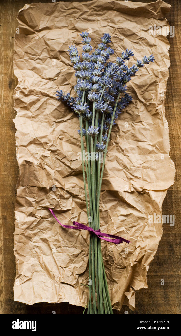 Lavender bunch on brown paper - Stock Image
