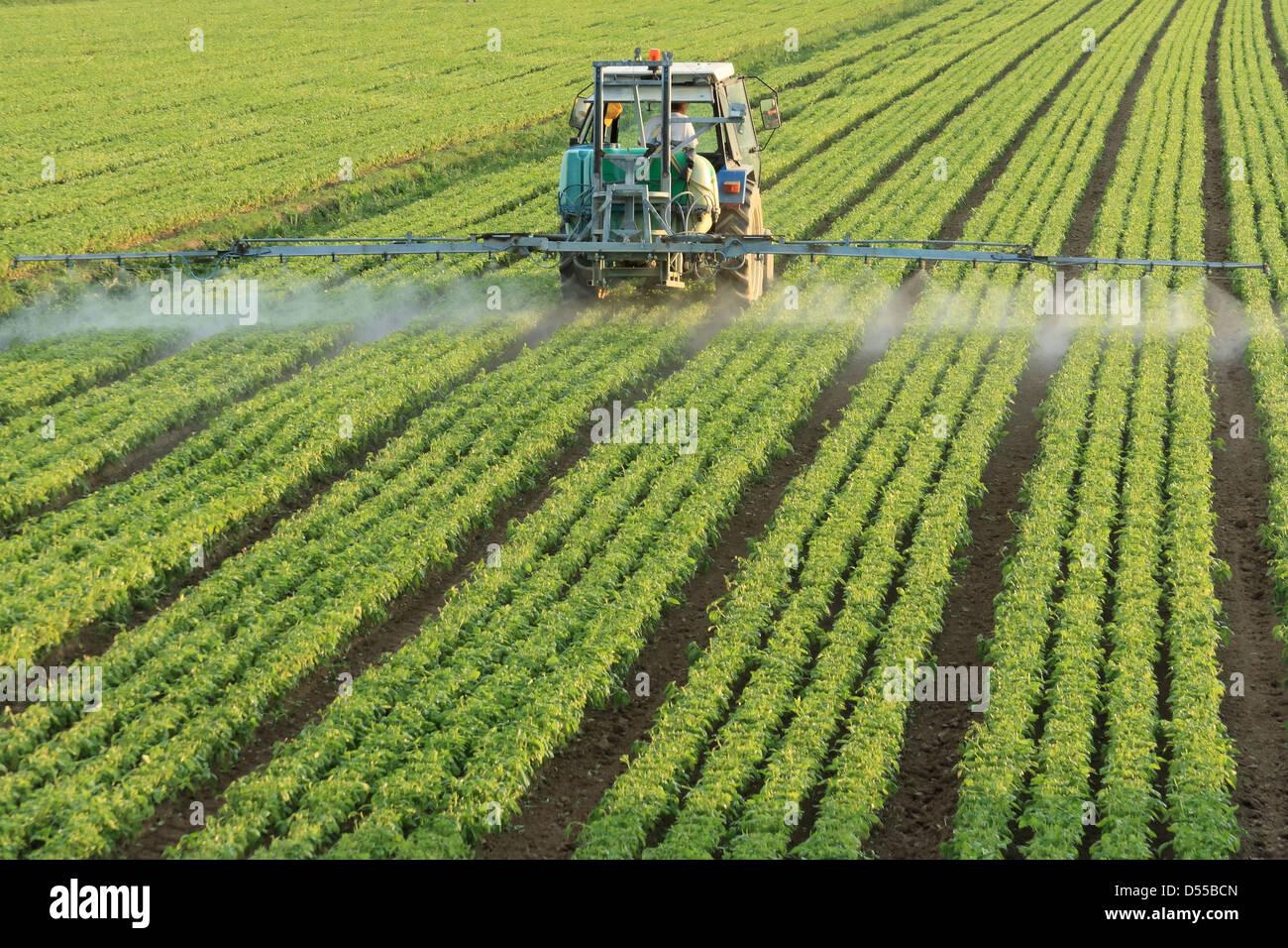 Farming tractor - Stock Image