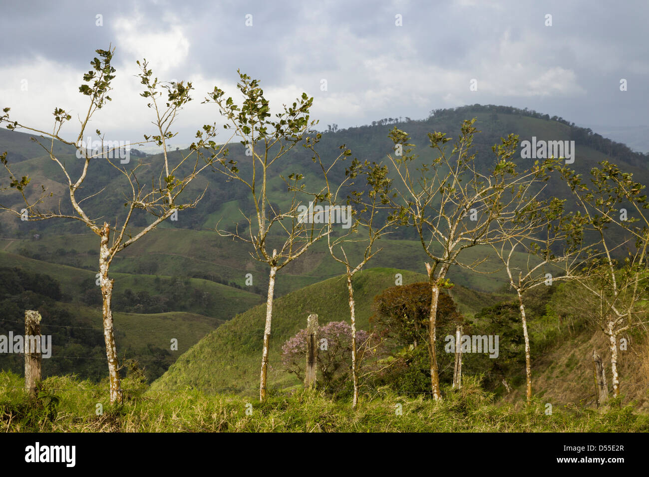Roadside with Mountains in the Lake Arenal area of the Alajuela province, Costa Rica. - Stock Image