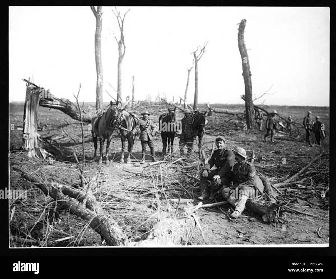 Cavalry - Stock Image