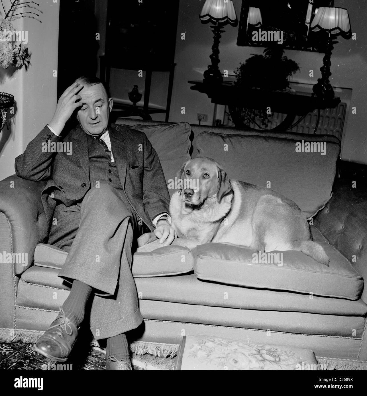 Historical 1950s. Man's best friend! A suited gentleman relaxing on sofa at home with his pet dog lying beside - Stock Image