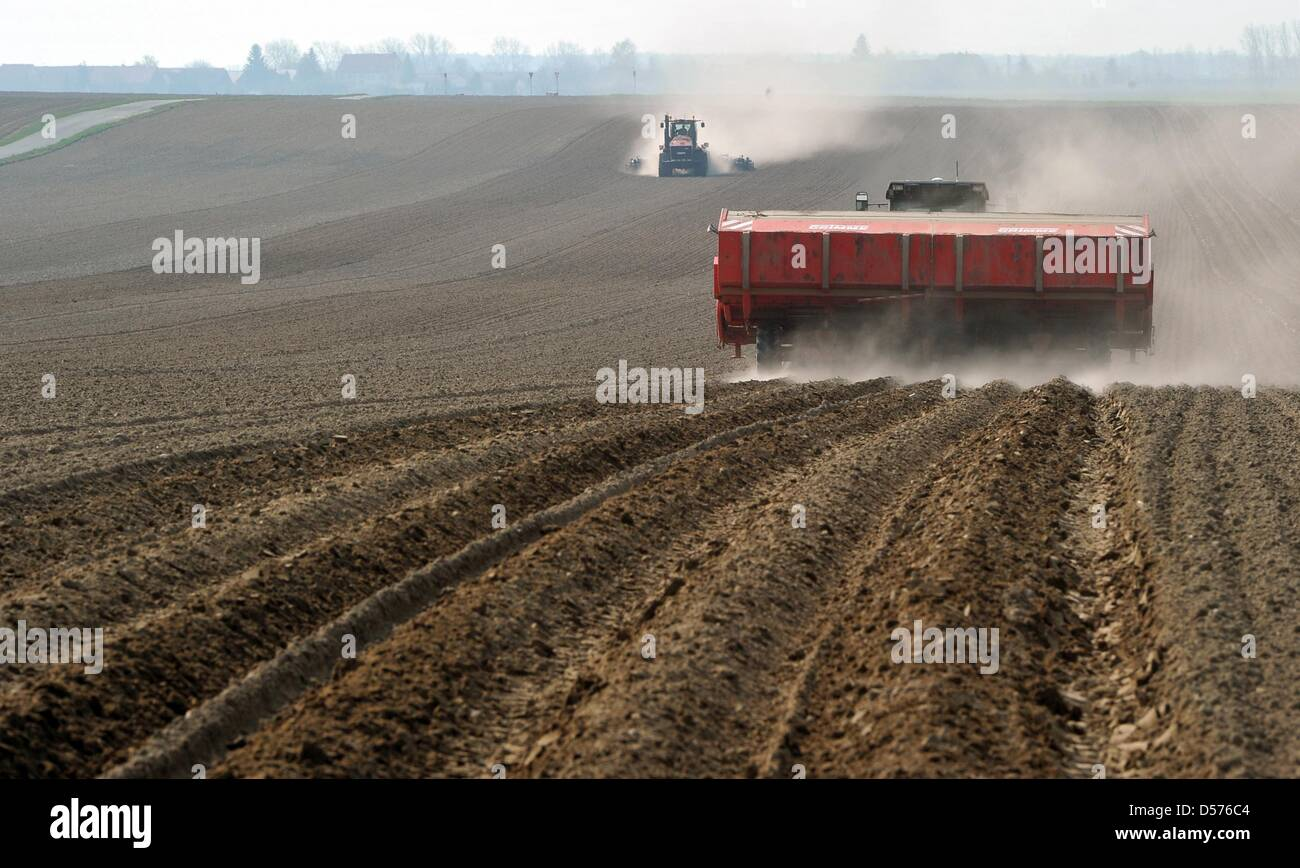 Farmers sow potatoes in the Niedergoersdorf rural district near Teltow Flaeming, Germany, 19 April 2010. Oehnaland - Stock Image
