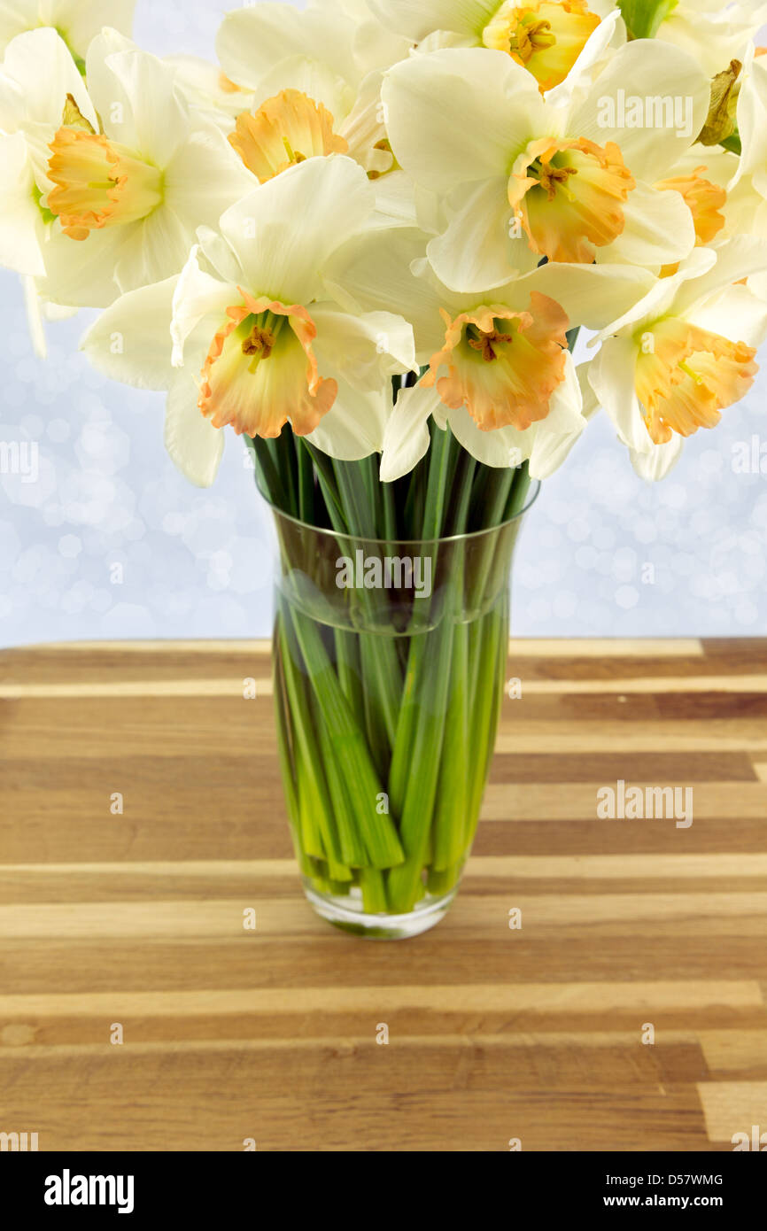 Beautiful spring daffodils in a glass vase on a oak worktop. - Stock Image