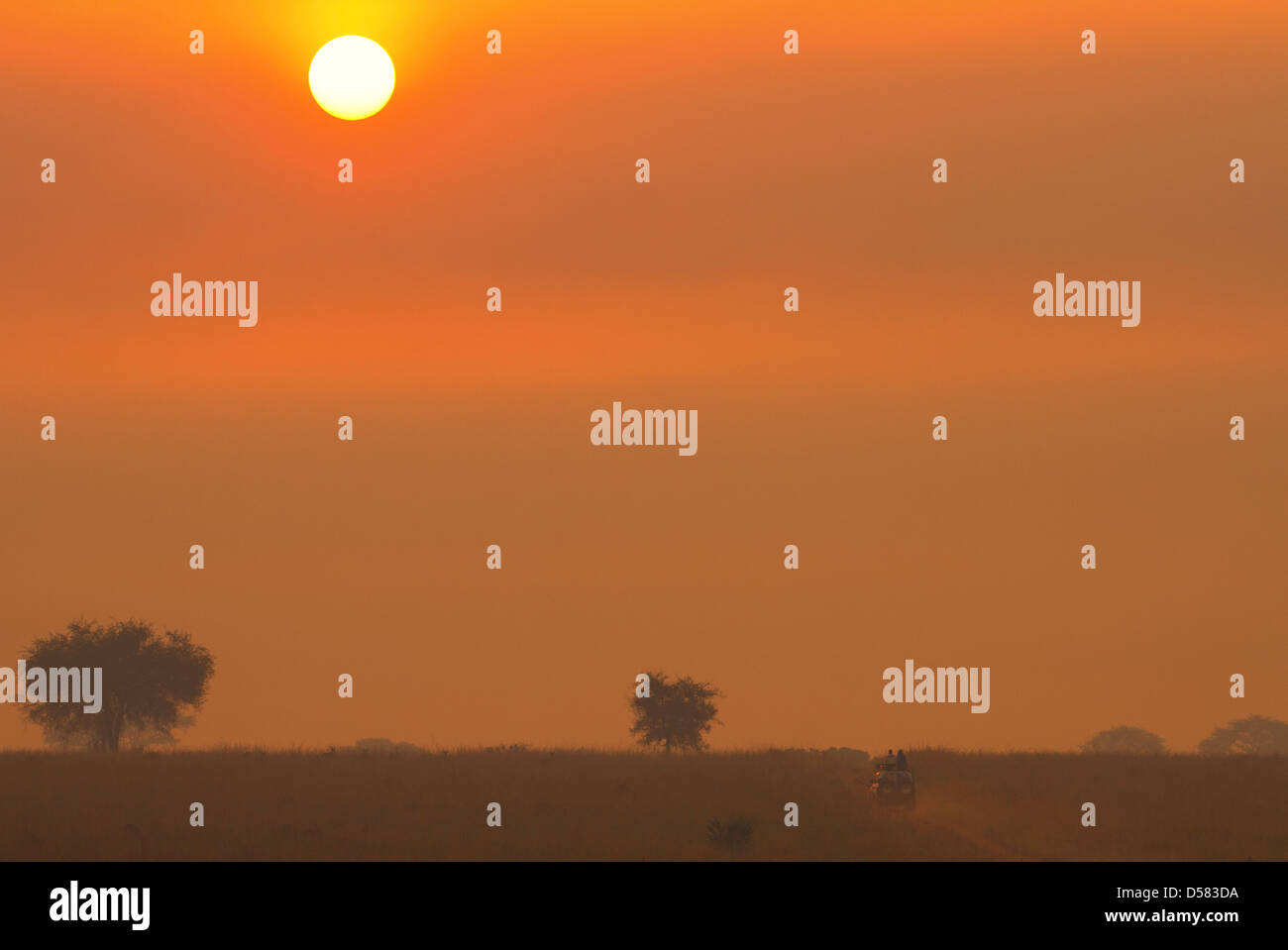 Safari vehicle on early morning game drive as sun rises over Murchison Falls National Park, throwing up dust - Stock Image