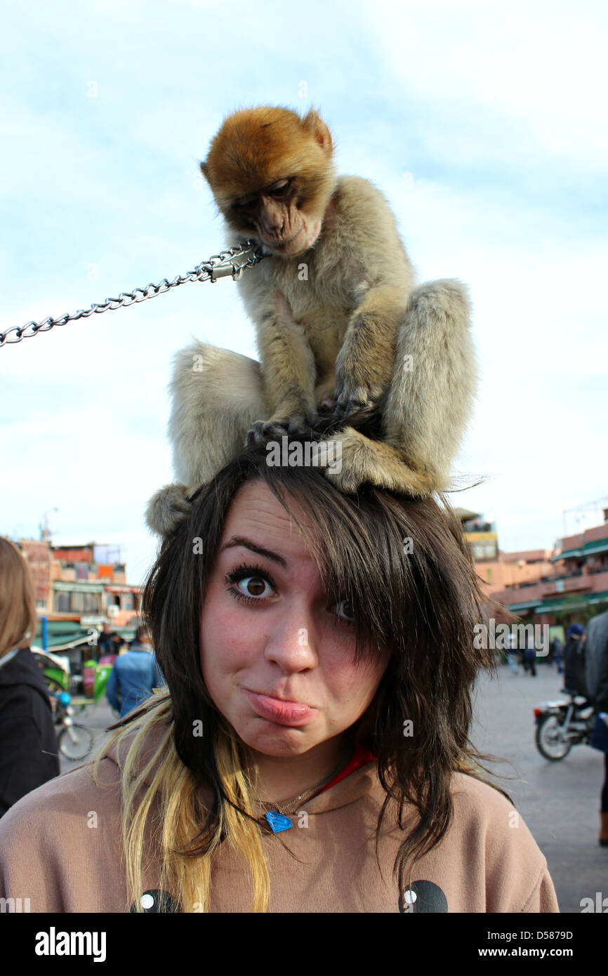 In the bustling Jemaa el-Fna, located in the historic medina of Marrakech, a girl has fun with a monkey on your Stock Photo