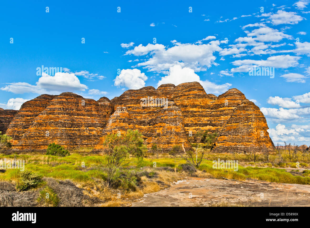 Bungle Bungle National Park, Purnululu, view of the characteristic beehive shaped sandstone domes, Western Australia - Stock Image