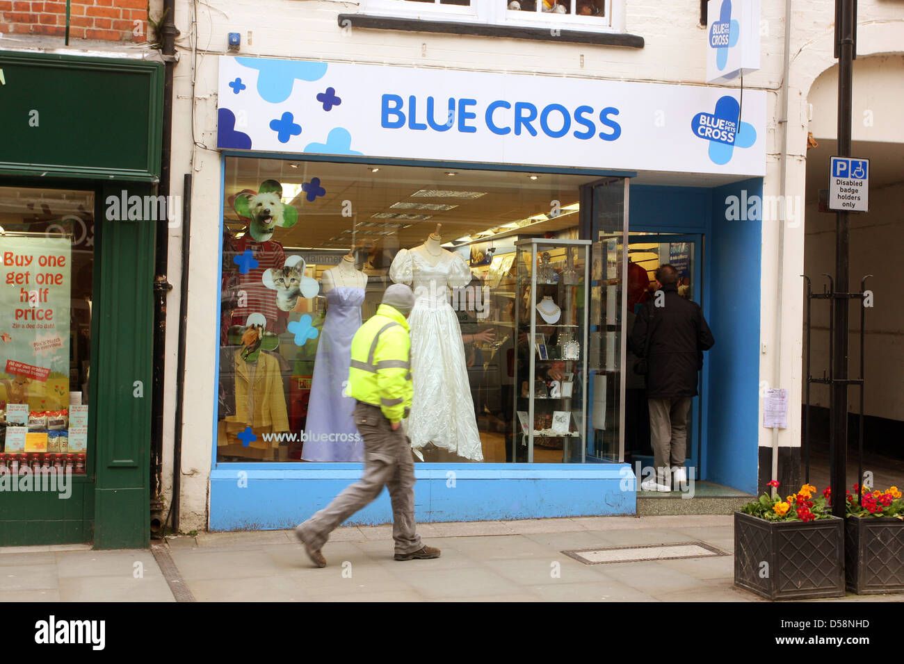 Man walking past the Blue cross animal charity shop on the high street in Wells, Somerset, March 2013 - Stock Image