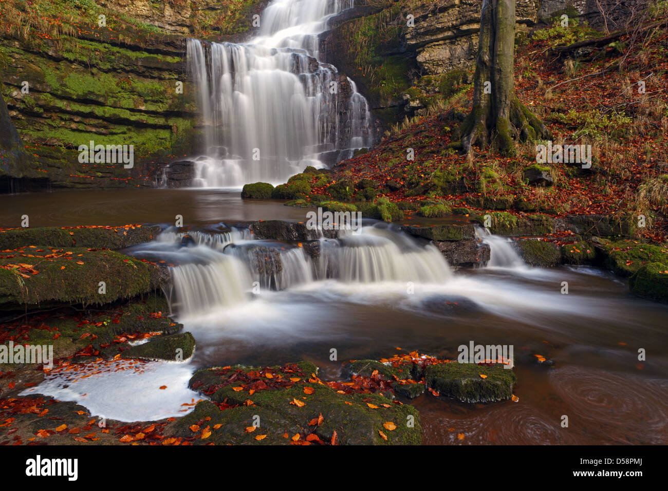 Scalebar Force waterfall in the Yorkshire Dales - Stock Image