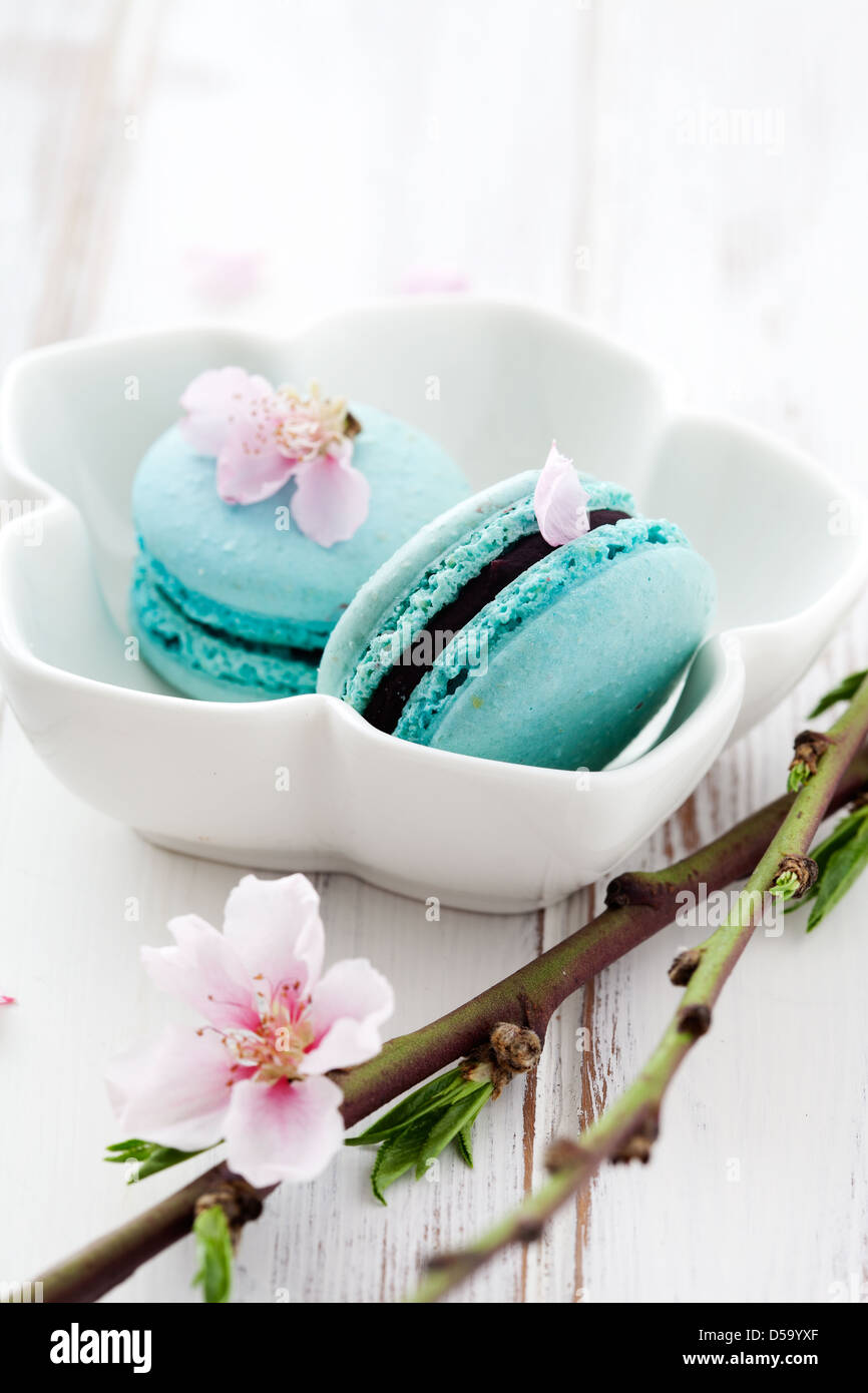 French macaroons in turquoise, decorated with cherry blossom - Stock Image