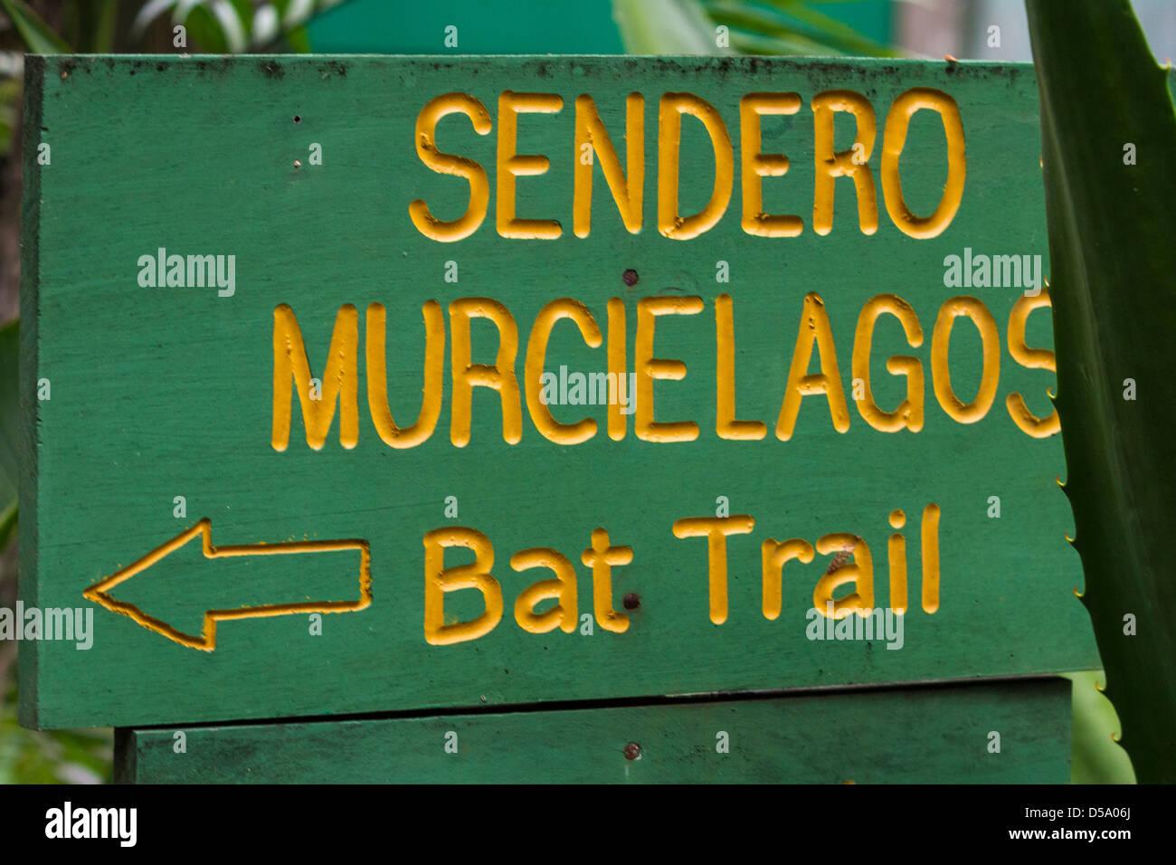 Children S Eternal Rain Forest Bosque Eterno De Los Ninos Monteverde Costa Rica Stock Photo Alamy