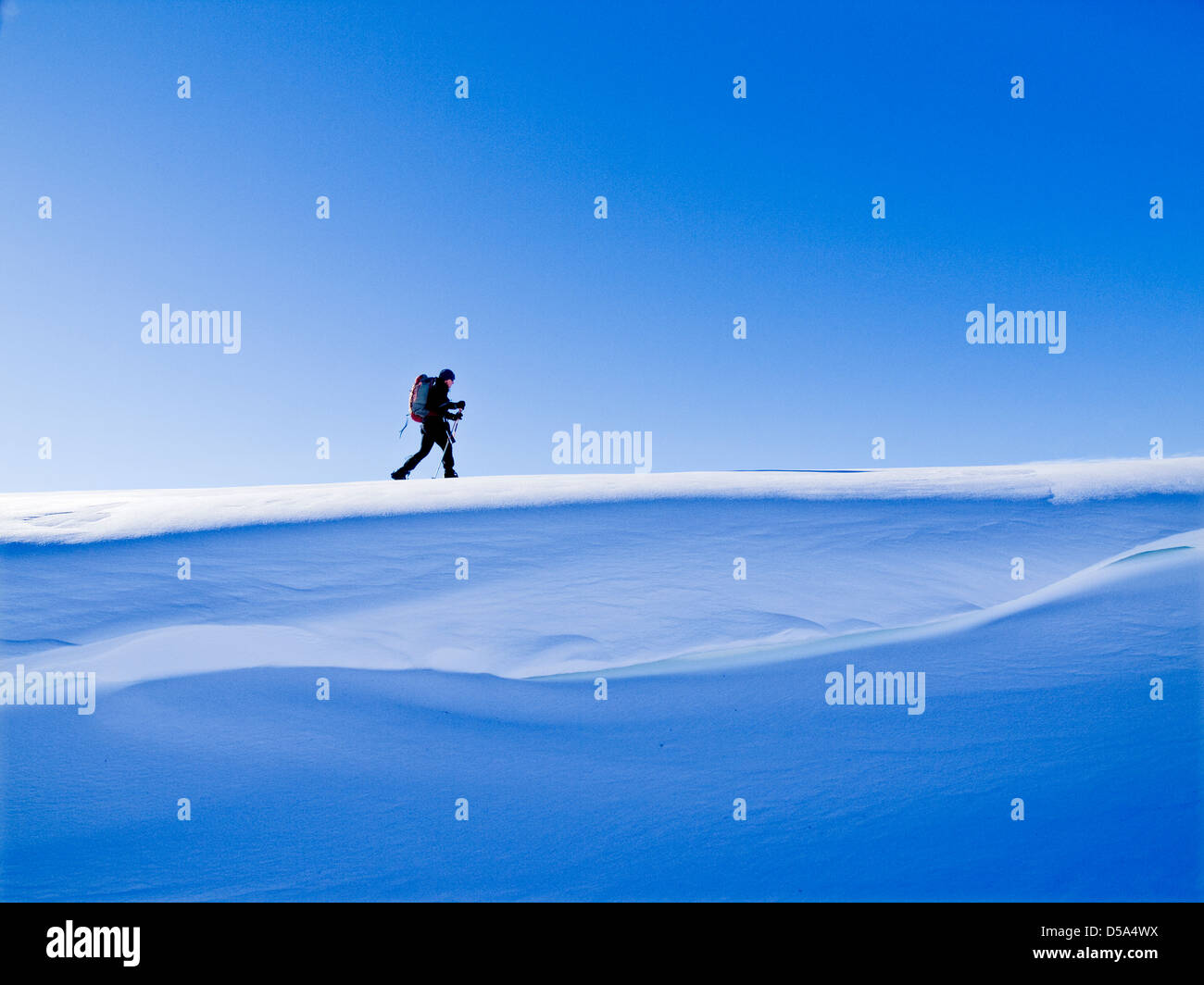 Ski touring in Northern Norway along a cornice of snow - Stock Image