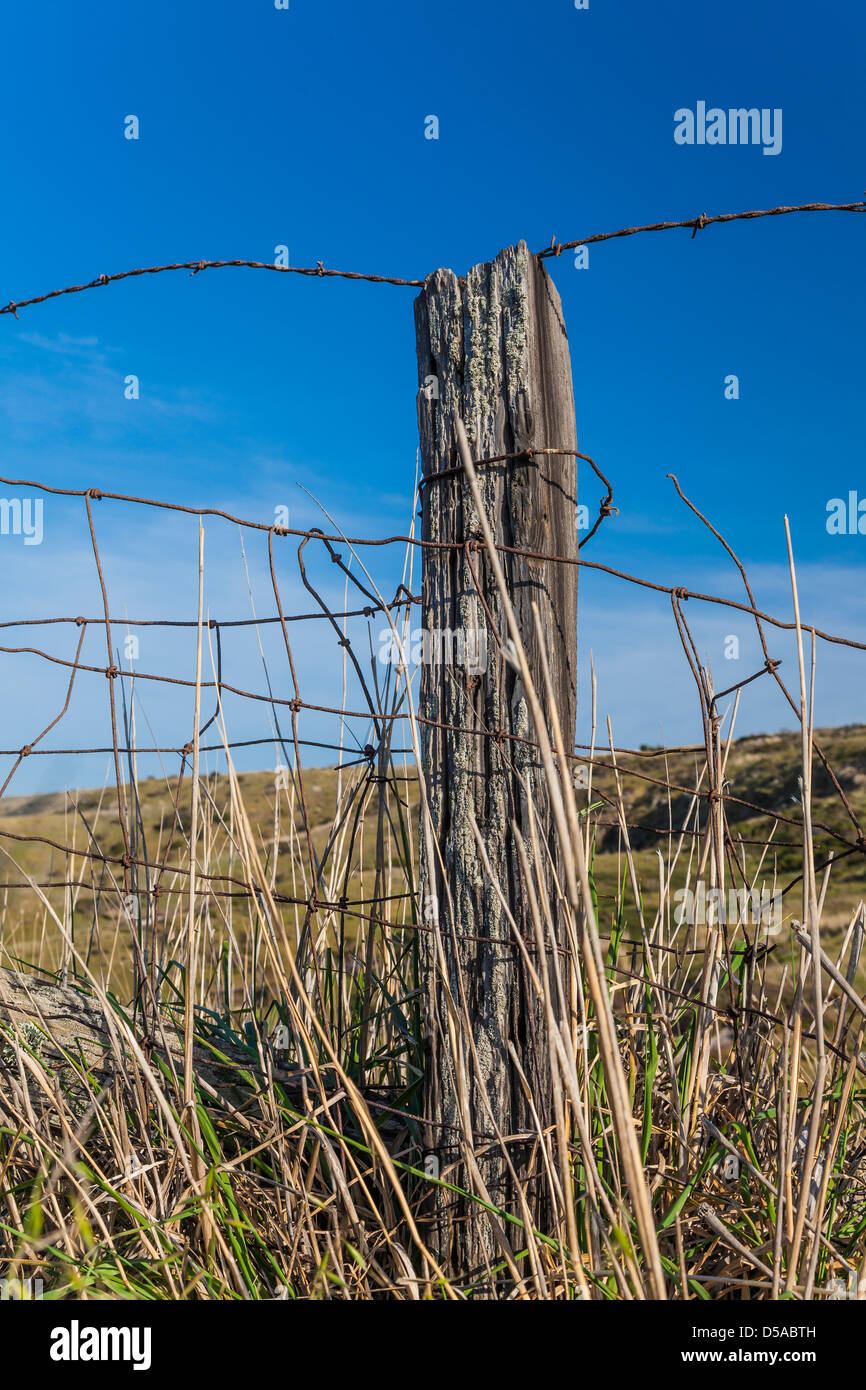 Fencepost on Santa Cruz Island in Channel Islands National Park - Stock Image