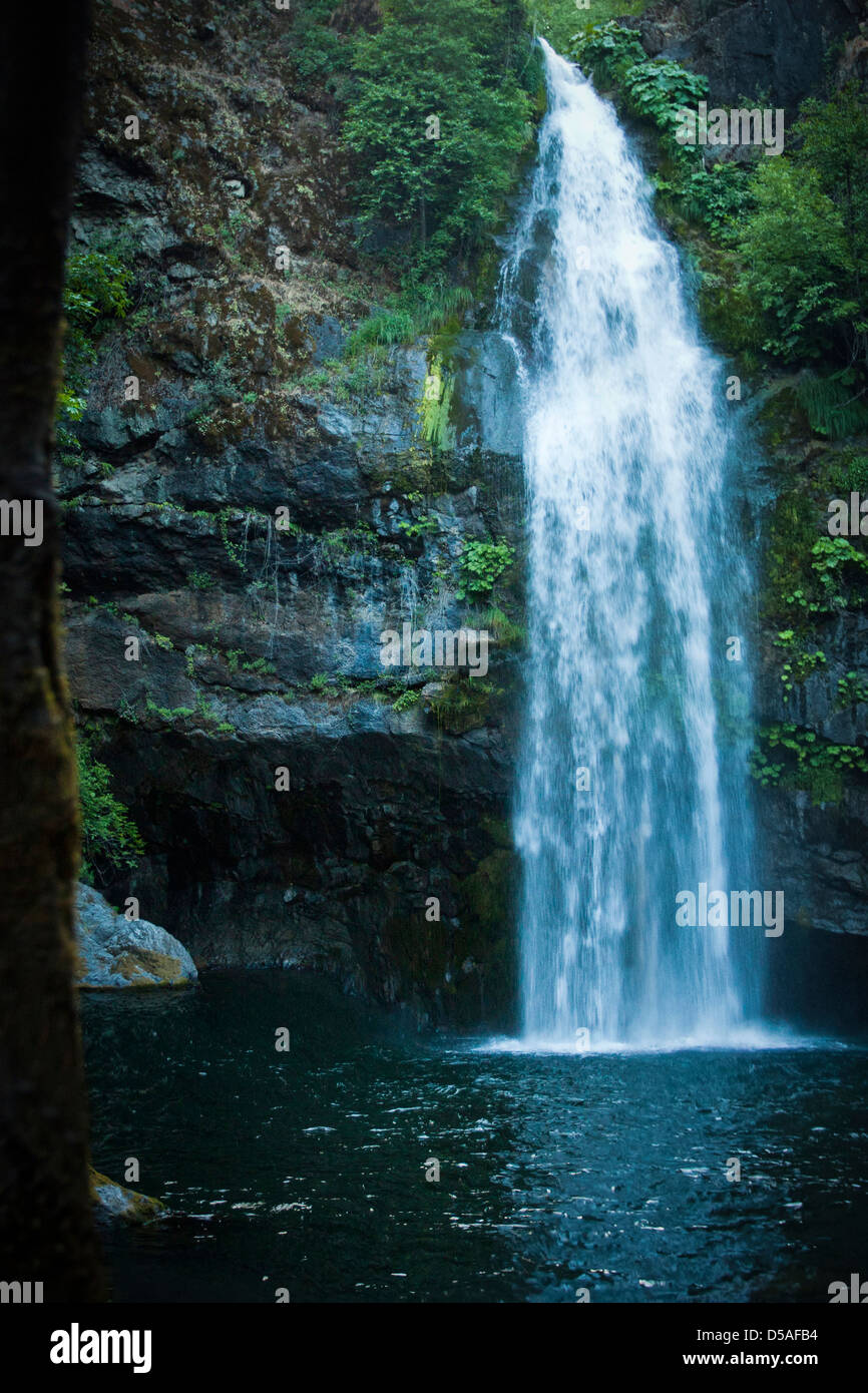 The lush and colorful microclimate around the Potem waterfall and its natural pool  in Northern California - Stock Image