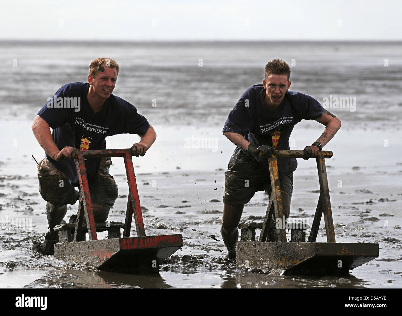On mudflat sleighs  called 'Kreier', Bernd (L) and Thomas force their way through the mud in the course of the 27th Stock Photo