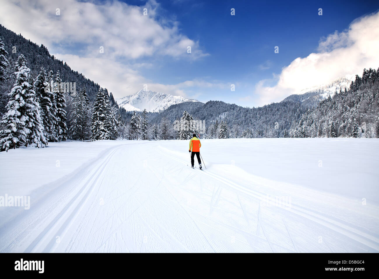 Cross-country skiing trail near Bayrischzell in the Alps, Bavaria, Germany - Stock Image