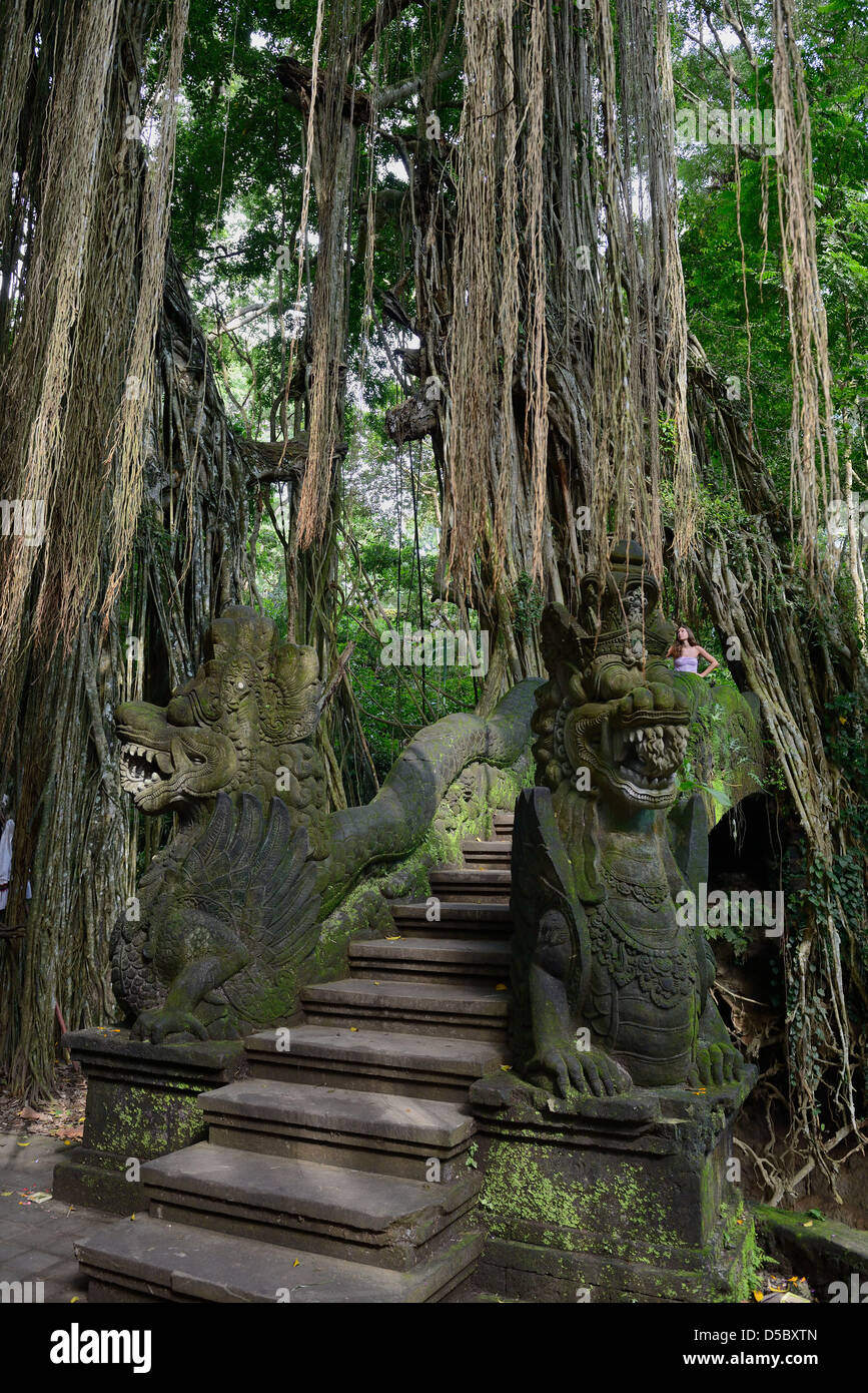 Asia Bali Indonesia  Central region, Ubud, Monkey forest park - Stock Image