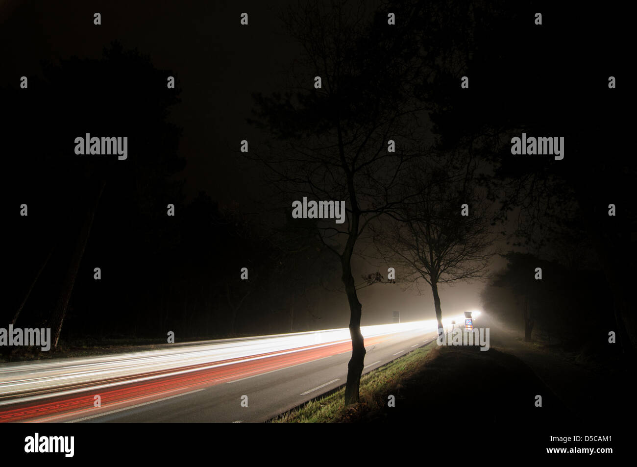 Long exposed night image of cars with lights on a dark road through a forest - Stock Image